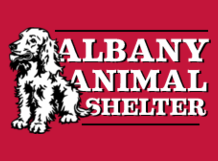 albany animal shelter design idea